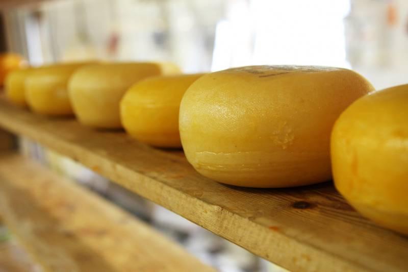 Dove si comprano le fuscelle per formaggio