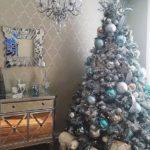 Quale tipo di albero di Natale acquistare?